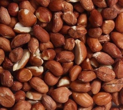 Premium Wild Bird Peanuts 25K - Aflatoxin Tested